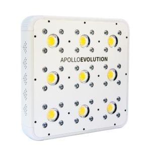 DELIGHT – Apollo Evolution 9