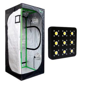 Pack LED Indoor 80×80 – 1 Apollo Evolution Pro 9